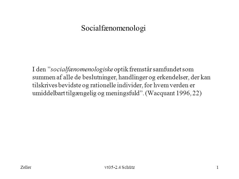 Zellervt05-2.4 Schütz1 Socialfænomenologi I den socialfænomenologiske optik fremstår samfundet som summen af alle de beslutninger, handlinger og erkendelser, der kan tilskrives bevidste og rationelle individer, for hvem verden er umiddelbart tilgængelig og meningsfuld .