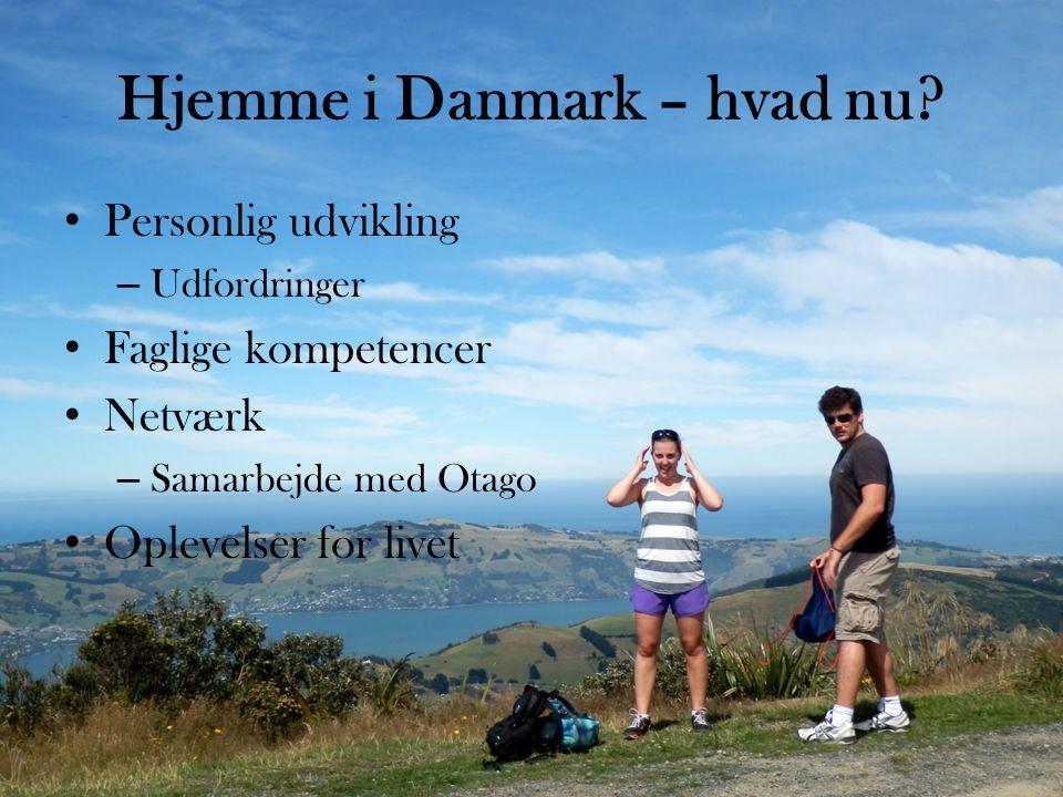 Hjemme i Danmark – hvad nu.