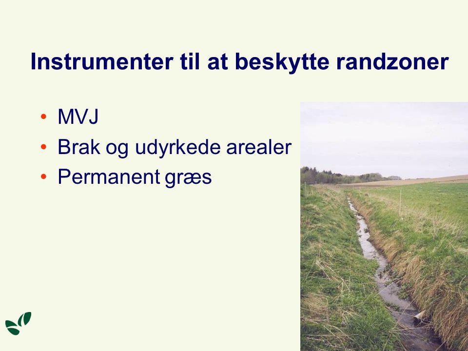 Instrumenter til at beskytte randzoner MVJ Brak og udyrkede arealer Permanent græs