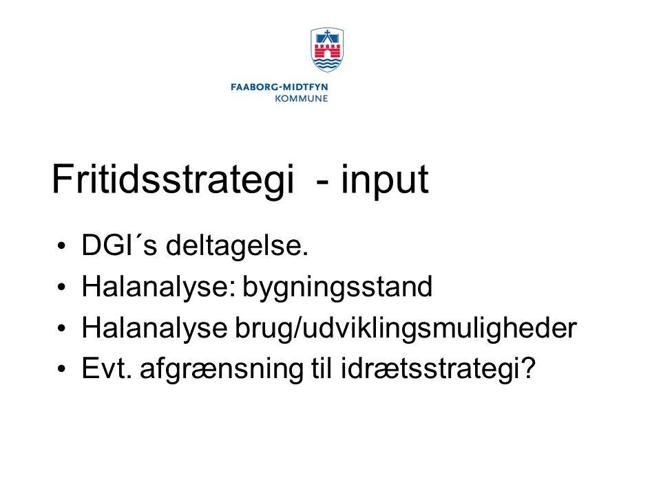 Fritidsstrategi - input DGI´s deltagelse.