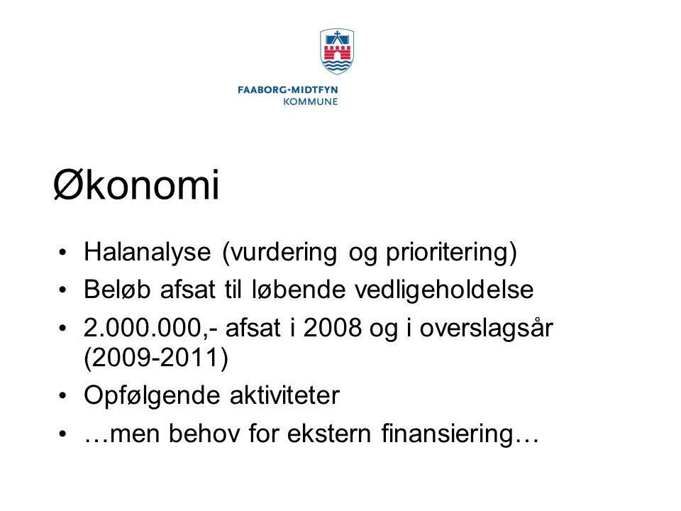 Økonomi Halanalyse (vurdering og prioritering) Beløb afsat til løbende vedligeholdelse 2.000.000,- afsat i 2008 og i overslagsår (2009-2011) Opfølgende aktiviteter …men behov for ekstern finansiering…
