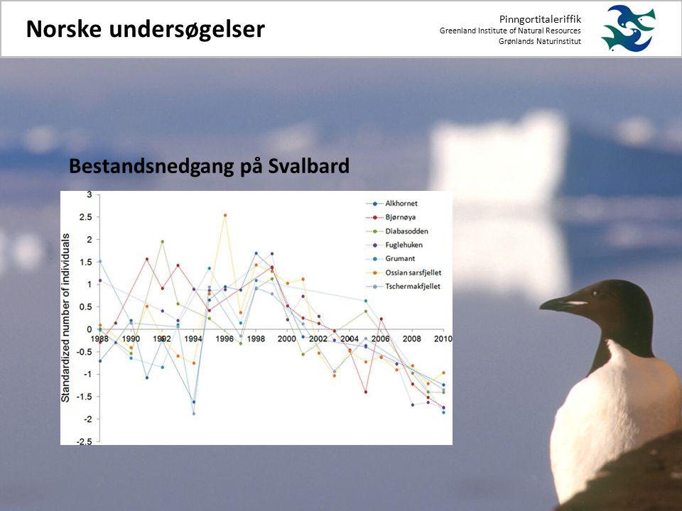Pinngortitaleriffik Greenland Institute of Natural Resources Grønlands Naturinstitut Norske undersøgelser Bestandsnedgang på Svalbard