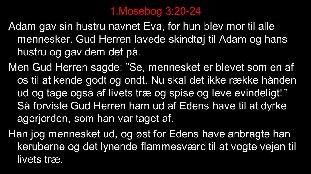 1.Mosebog 3:20-24 Adam gav sin hustru navnet Eva, for hun blev mor til alle mennesker.