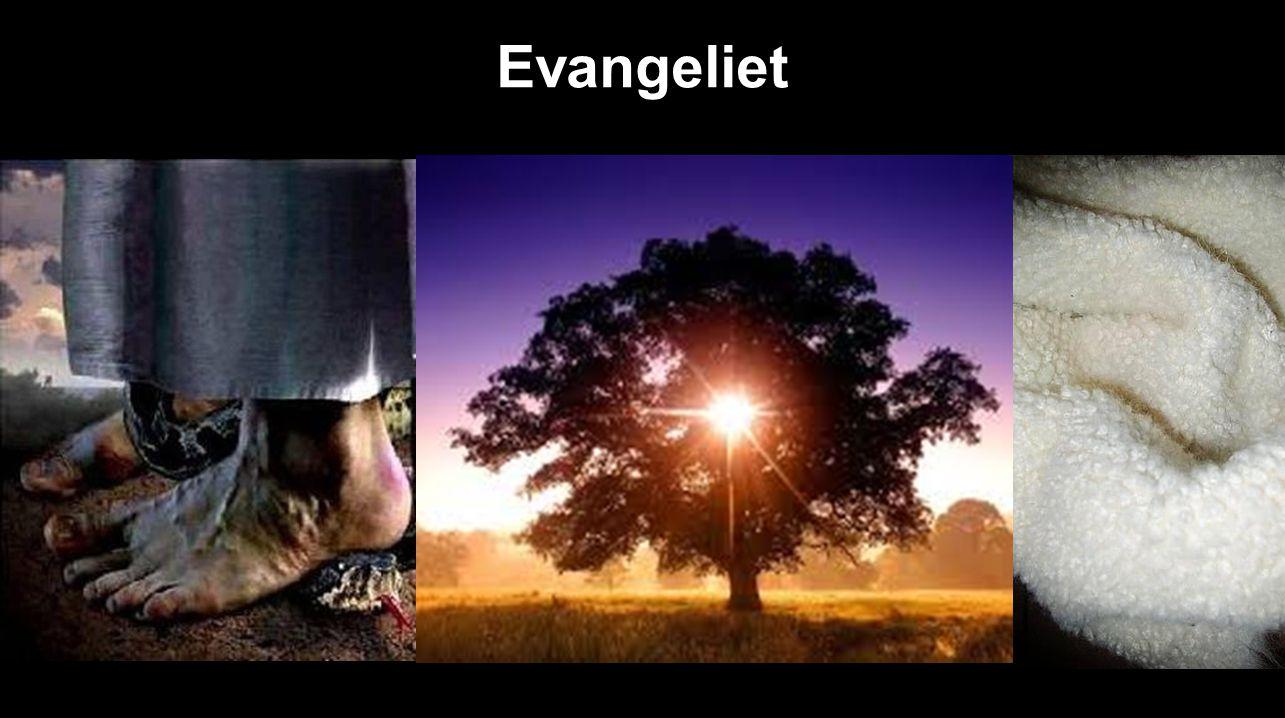 Evangeliet …………….