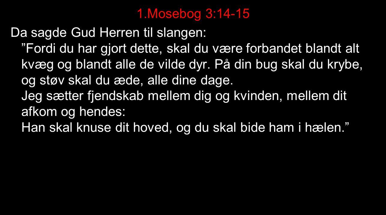 1.Mosebog 3:14-15 Da sagde Gud Herren til slangen: Fordi du har gjort dette, skal du være forbandet blandt alt kvæg og blandt alle de vilde dyr.