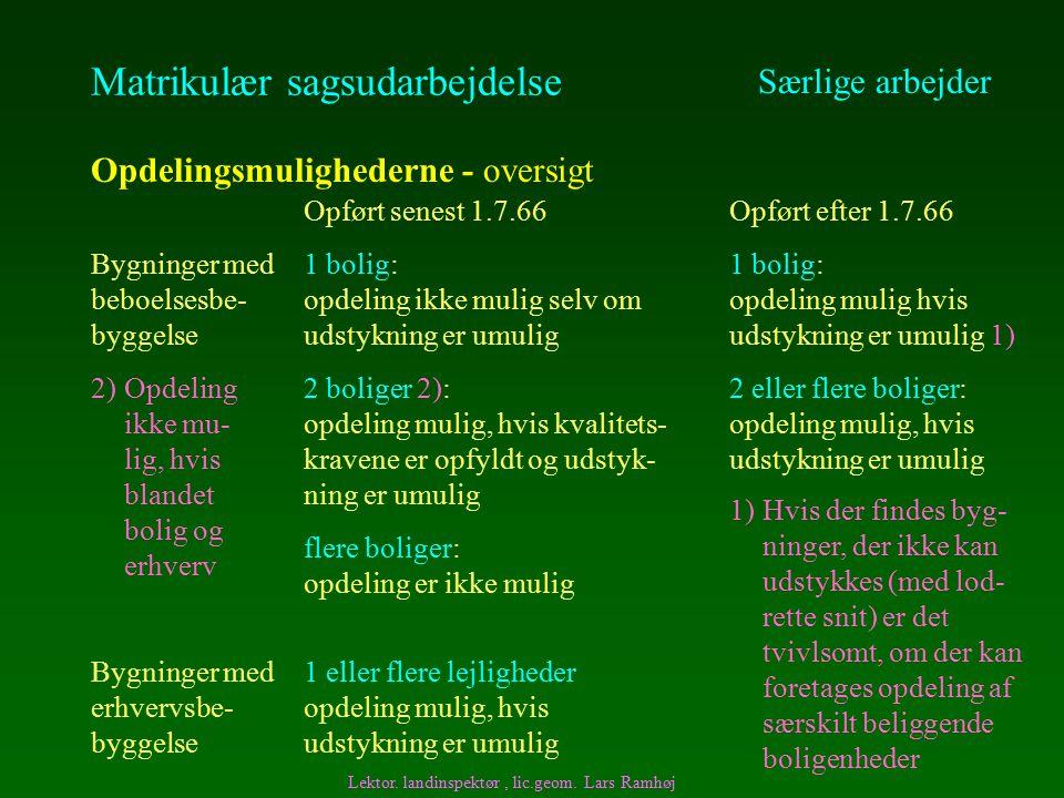 Matrikulær sagsudarbejdelse Særlige arbejder Opdelingsmulighederne - oversigt Lektor.