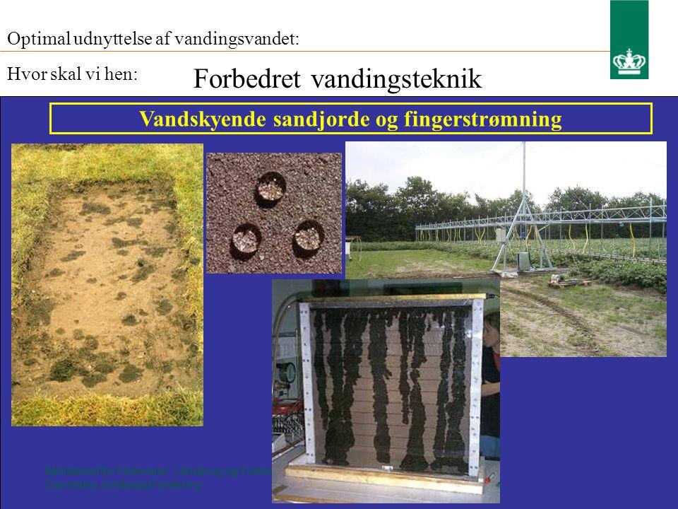 Ministeriet for Fødevarer, Landbrug og Fiskeri Danmarks JordbrugsForskning Optimal udnyttelse af vandingsvandet: Hvor skal vi hen: Forbedret vandingsteknik Vandskyende sandjorde og fingerstrømning