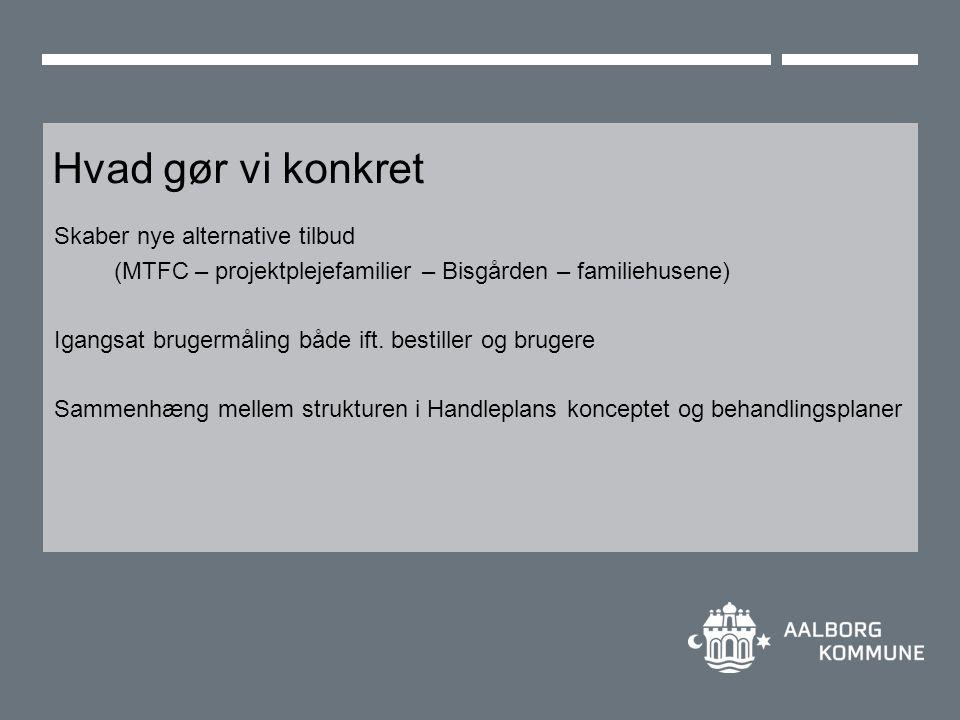 Hvad gør vi konkret Skaber nye alternative tilbud (MTFC – projektplejefamilier – Bisgården – familiehusene) Igangsat brugermåling både ift.