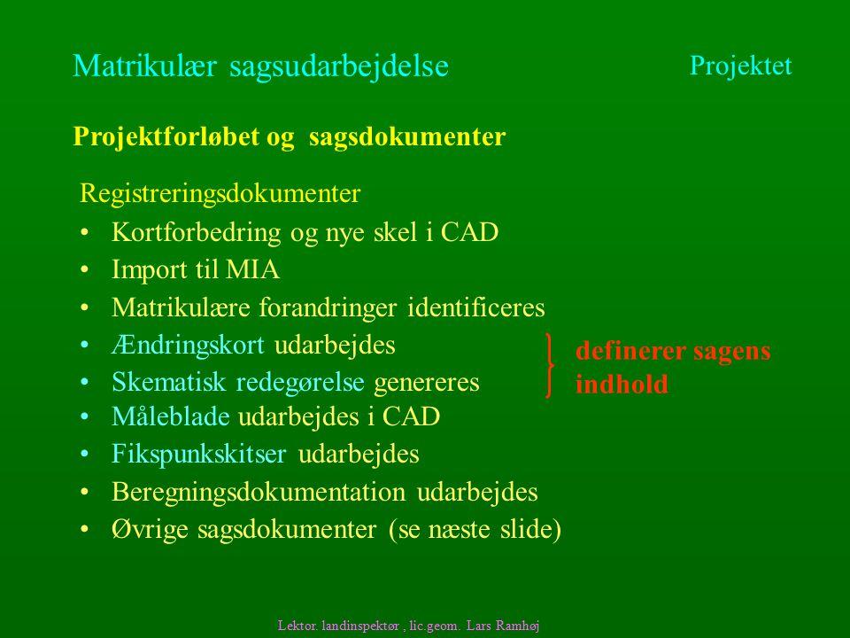Matrikulær sagsudarbejdelse Kortforbedring og nye skel i CAD Import til MIA Matrikulære forandringer identificeres Ændringskort udarbejdes Skematisk redegørelse genereres Projektforløbet og sagsdokumenter Lektor.