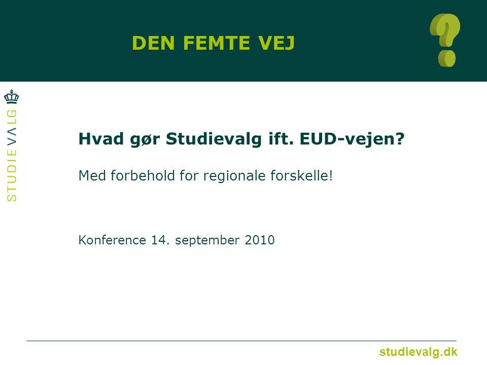 studievalg.dk DEN FEMTE VEJ Hvad gør Studievalg ift.