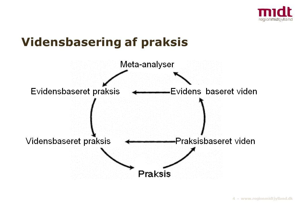 4 ▪ www.regionmidtjylland.dk Vidensbasering af praksis