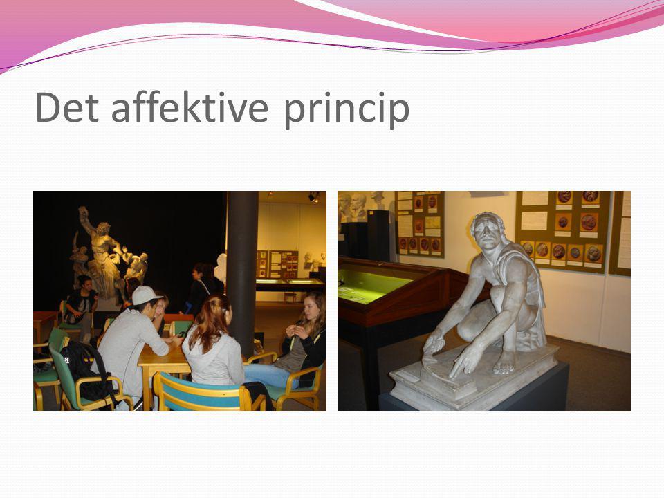 Det affektive princip