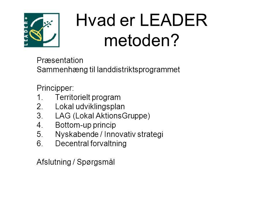 Hvad er LEADER metoden.