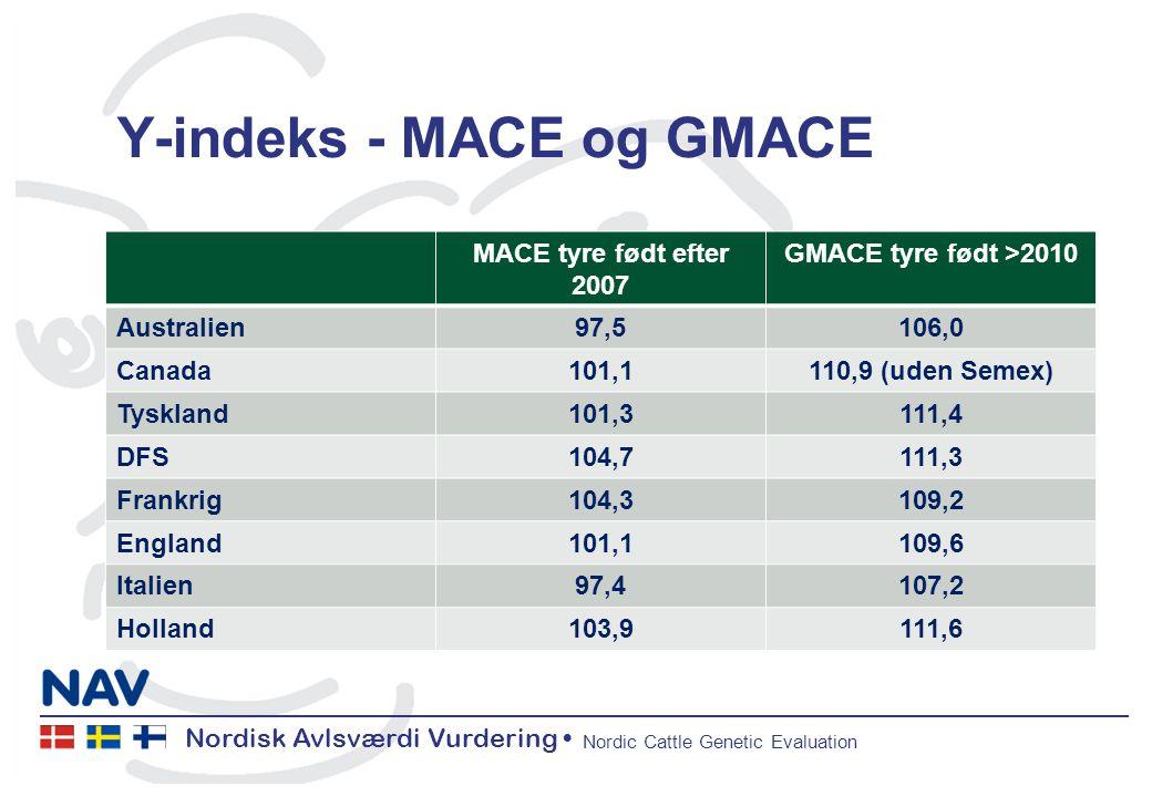 Nordisk Avlsværdi Vurdering Nordic Cattle Genetic Evaluation Y-indeks - MACE og GMACE MACE tyre født efter 2007 GMACE tyre født >2010 Australien97,5106,0 Canada101,1110,9 (uden Semex) Tyskland101,3111,4 DFS104,7111,3 Frankrig104,3109,2 England101,1109,6 Italien97,4107,2 Holland103,9111,6