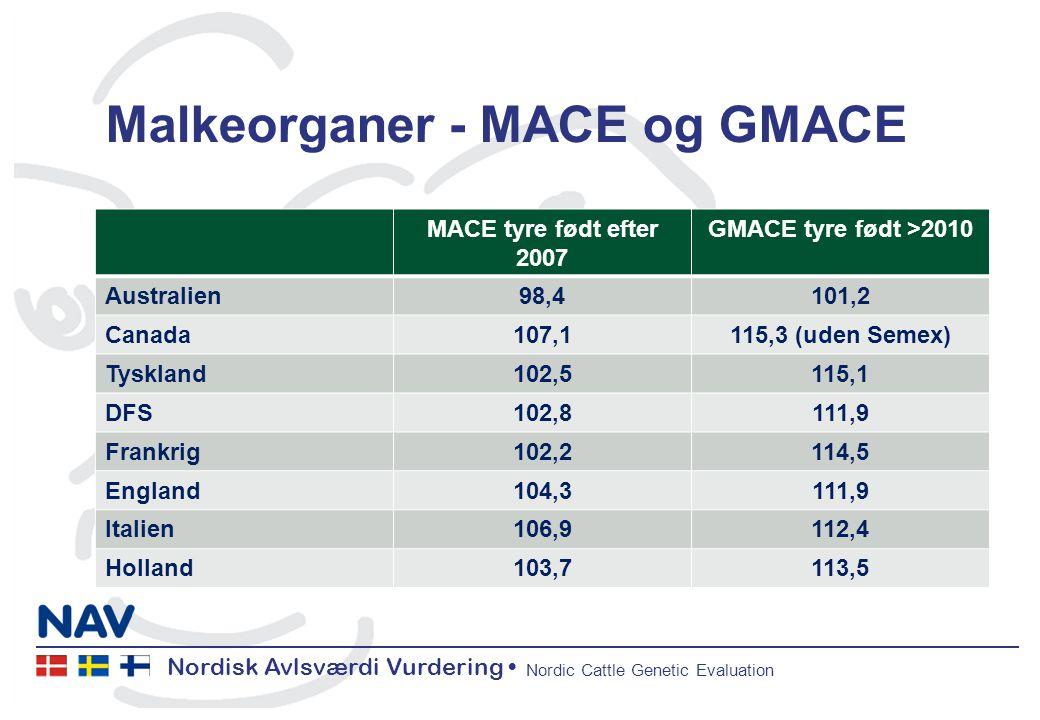 Nordisk Avlsværdi Vurdering Nordic Cattle Genetic Evaluation Malkeorganer - MACE og GMACE MACE tyre født efter 2007 GMACE tyre født >2010 Australien98,4101,2 Canada107,1115,3 (uden Semex) Tyskland102,5115,1 DFS102,8111,9 Frankrig102,2114,5 England104,3111,9 Italien106,9112,4 Holland103,7113,5