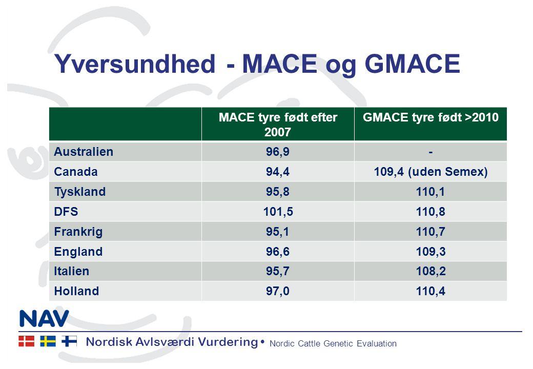 Nordisk Avlsværdi Vurdering Nordic Cattle Genetic Evaluation Yversundhed - MACE og GMACE MACE tyre født efter 2007 GMACE tyre født >2010 Australien96,9- Canada94,4109,4 (uden Semex) Tyskland95,8110,1 DFS101,5110,8 Frankrig95,1110,7 England96,6109,3 Italien95,7108,2 Holland97,0110,4