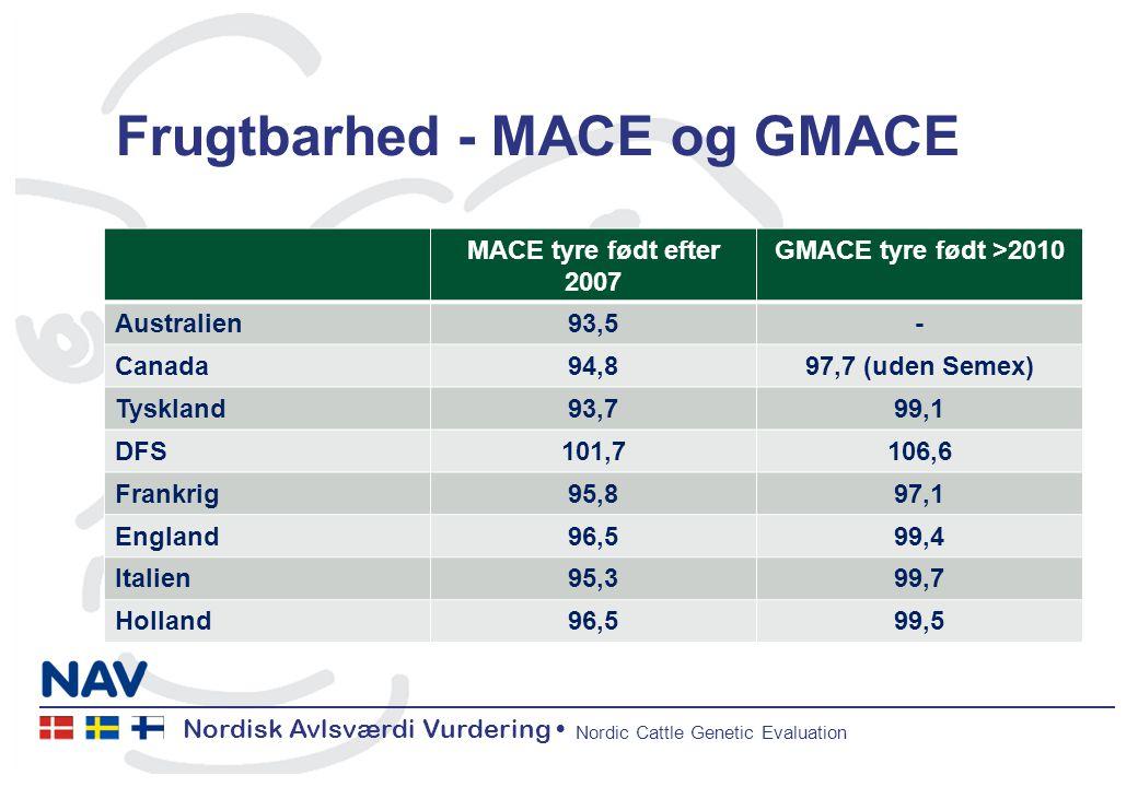 Nordisk Avlsværdi Vurdering Nordic Cattle Genetic Evaluation Frugtbarhed - MACE og GMACE MACE tyre født efter 2007 GMACE tyre født >2010 Australien93,5- Canada94,897,7 (uden Semex) Tyskland93,799,1 DFS101,7106,6 Frankrig95,897,1 England96,599,4 Italien95,399,7 Holland96,599,5