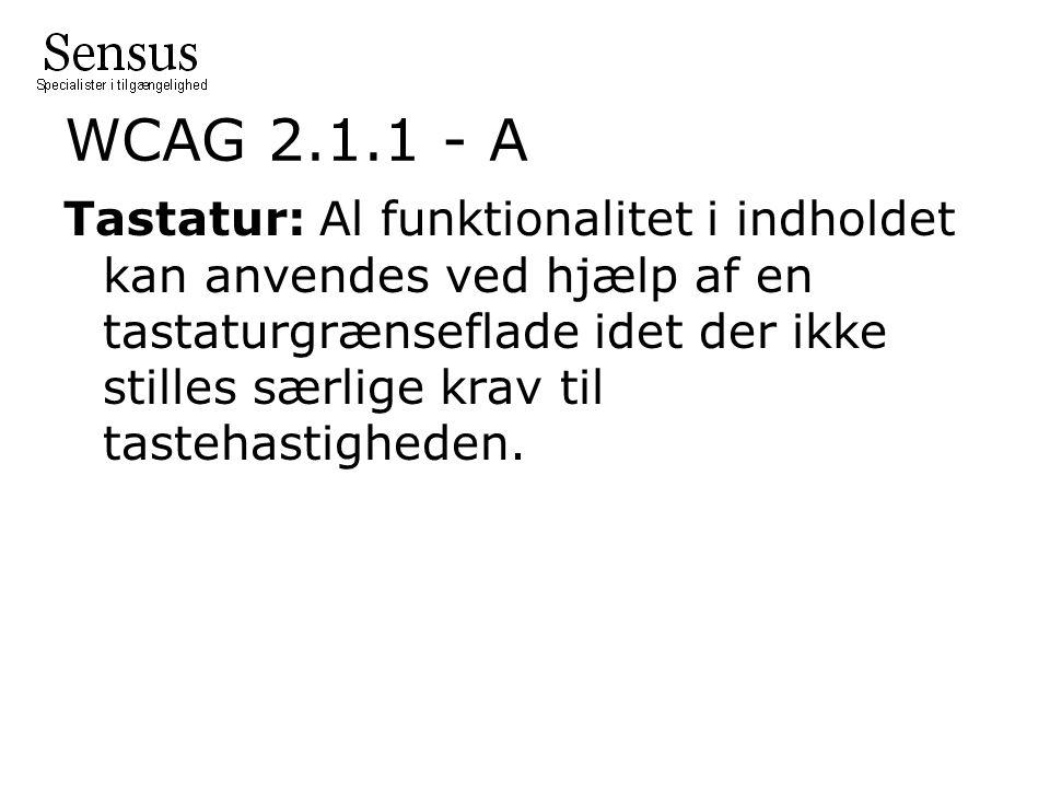 WCAG 2.1.1 - A Tastatur: Al funktionalitet i indholdet kan anvendes ved hjælp af en tastaturgrænseflade idet der ikke stilles særlige krav til tastehastigheden.