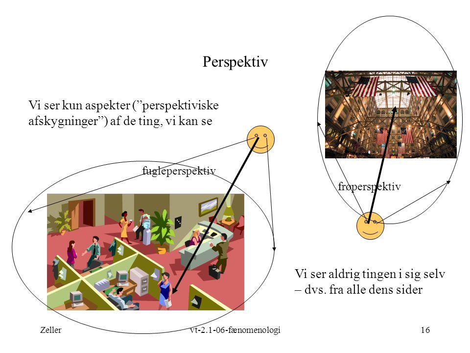 Zellervt-2.1-06-fænomenologi16 Perspektiv Vi ser kun aspekter ( perspektiviske afskygninger ) af de ting, vi kan se Vi ser aldrig tingen i sig selv – dvs.