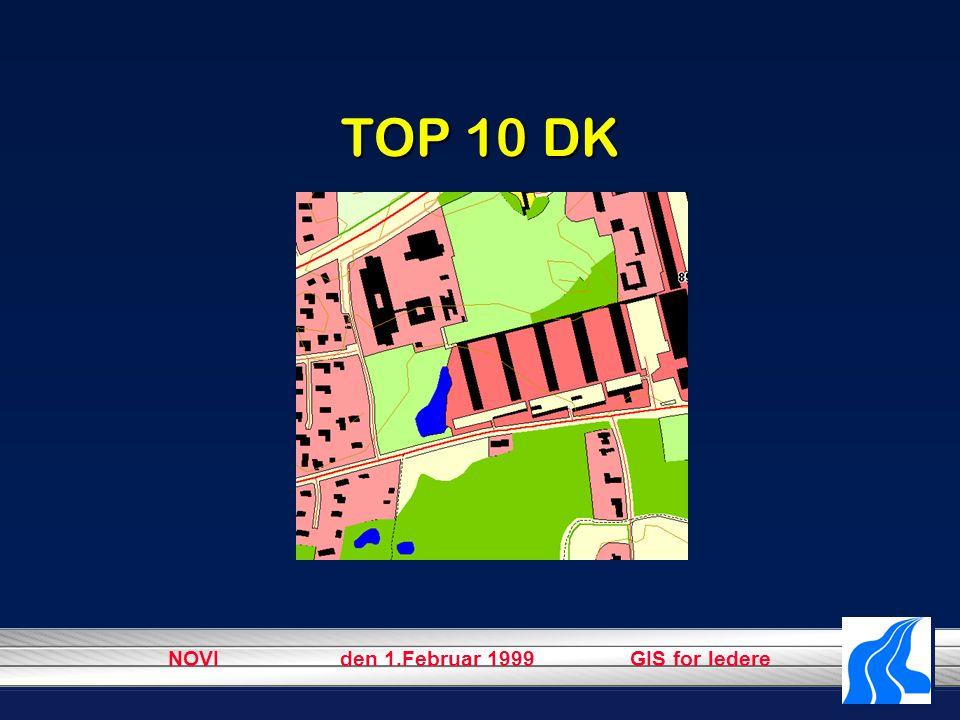 NOVI den 1.Februar 1999 GIS for ledere TOP 10 DK