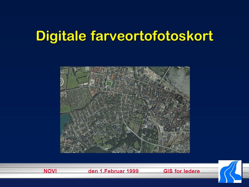 NOVI den 1.Februar 1999 GIS for ledere Digitale farveortofotoskort