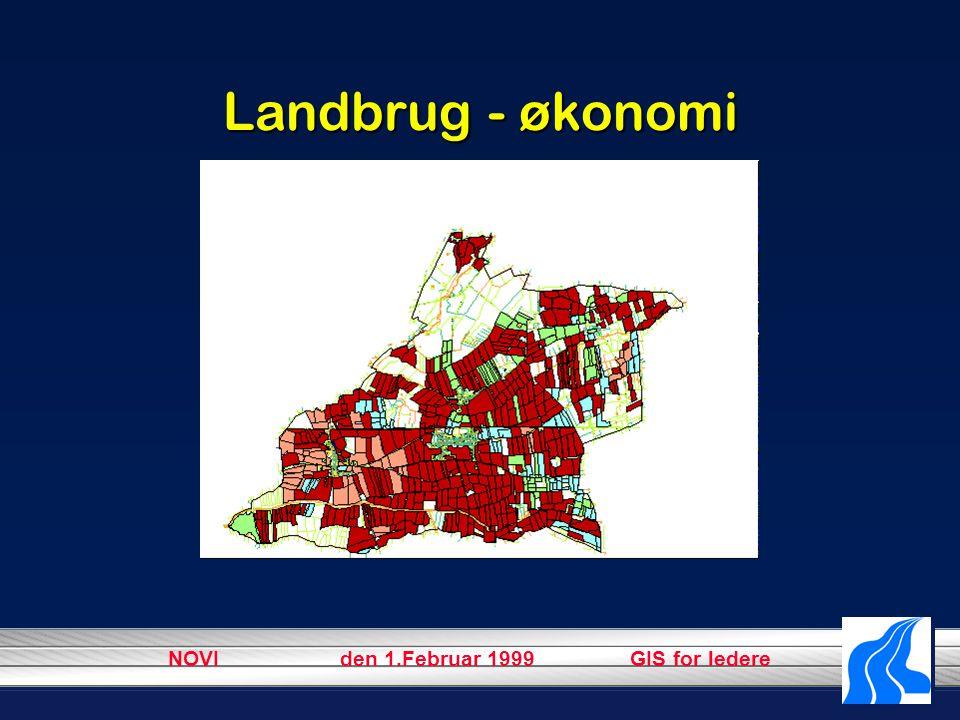 NOVI den 1.Februar 1999 GIS for ledere Landbrug - økonomi