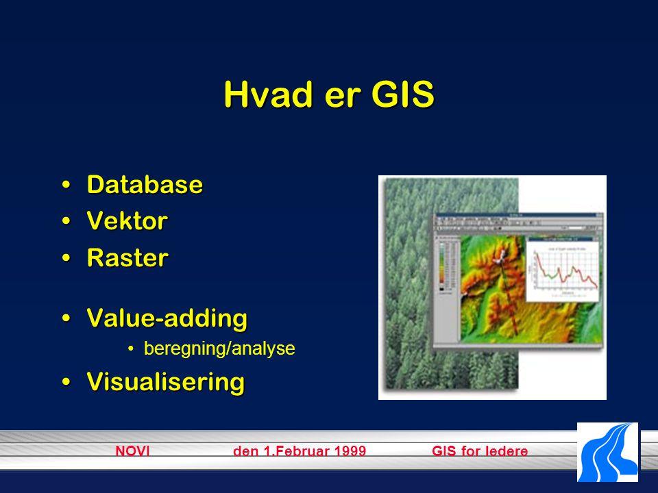 NOVI den 1.Februar 1999 GIS for ledere Hvad er GIS DatabaseDatabase VektorVektor RasterRaster Value-addingValue-adding beregning/analyse VisualiseringVisualisering