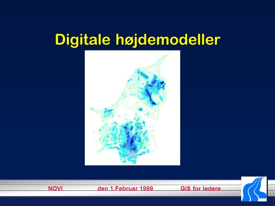 NOVI den 1.Februar 1999 GIS for ledere Digitale højdemodeller