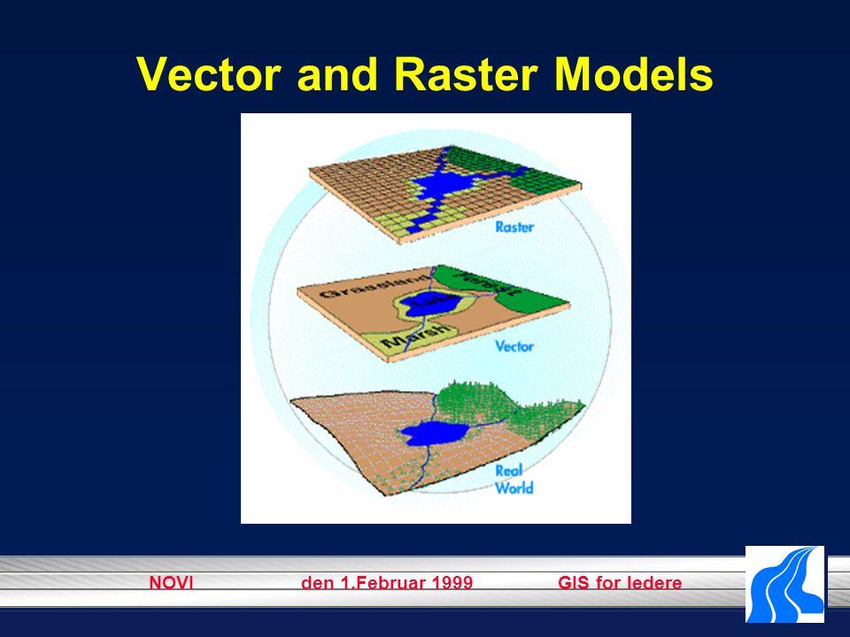 NOVI den 1.Februar 1999 GIS for ledere Vector and Raster Models