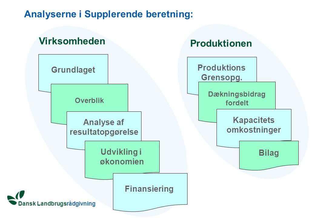 Analyserne i Supplerende beretning: Grundlaget Overblik Analyse af resultatopgørelse Udvikling i økonomien Finansiering Produktions Grensopg.