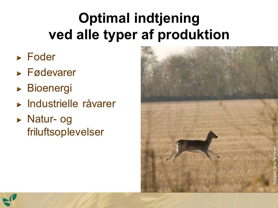Optimal indtjening ved alle typer af produktion Foder Fødevarer Bioenergi Industrielle råvarer Natur- og friluftsoplevelser Fotograf: Jens Tønnesen