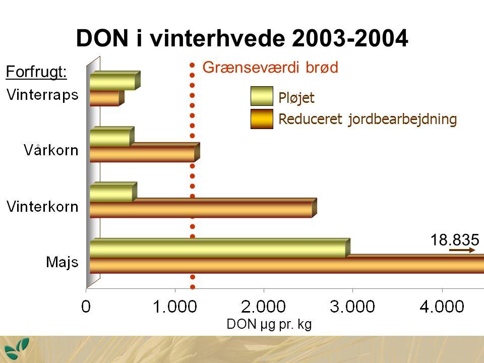 DON i vinterhvede 2003-2004 DON µ g pr.