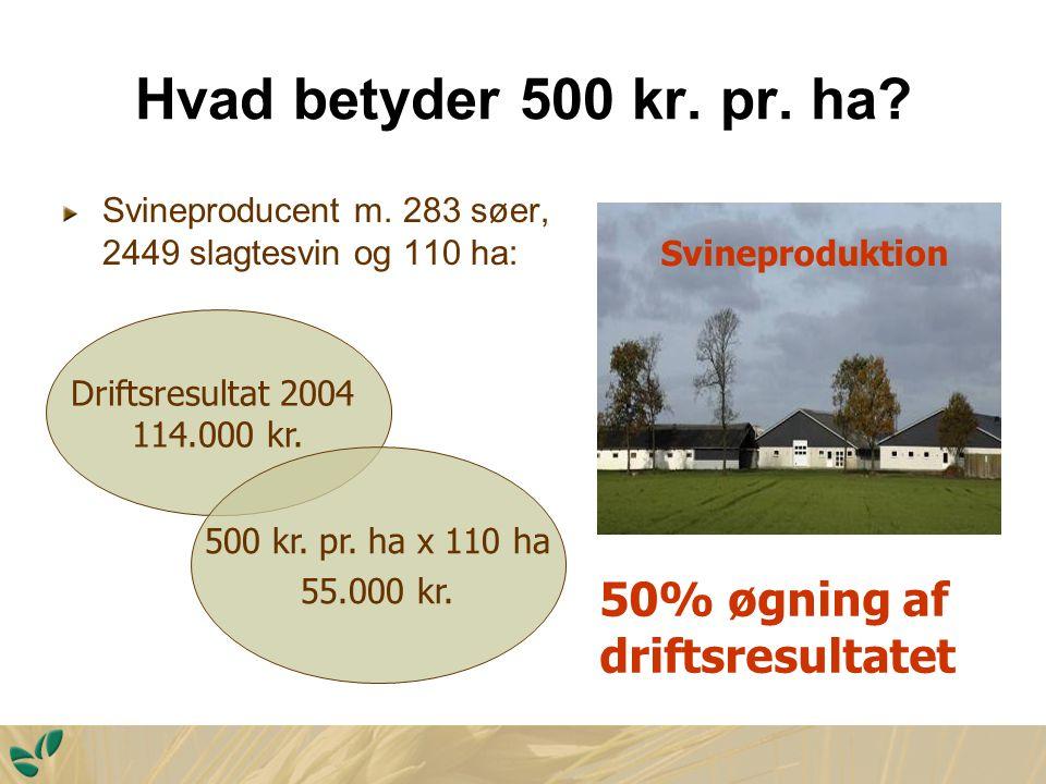 Hvad betyder 500 kr. pr. ha. Svineproducent m.