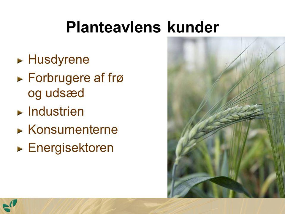 Planteavlens kunder Husdyrene Forbrugere af frø og udsæd Industrien Konsumenterne Energisektoren