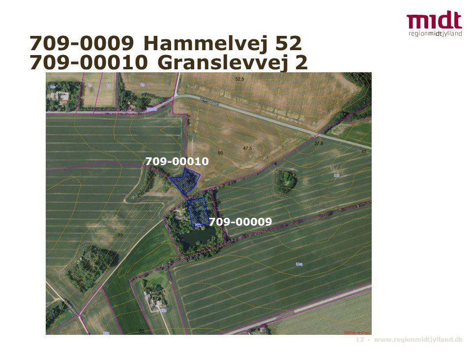 12 ▪ www.regionmidtjylland.dk 709-0009 Hammelvej 52 709-00010 Granslevvej 2 709-00009 709-00010 709-00009 709-00010