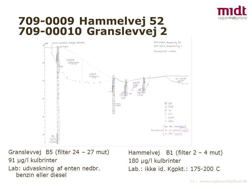 13 ▪ www.regionmidtjylland.dk 709-0009 Hammelvej 52 709-00010 Granslevvej 2 Granslevvej B5 (filter 24 – 27 mut) 91 µg/l kulbrinter Lab: udvaskning af enten nedbr.