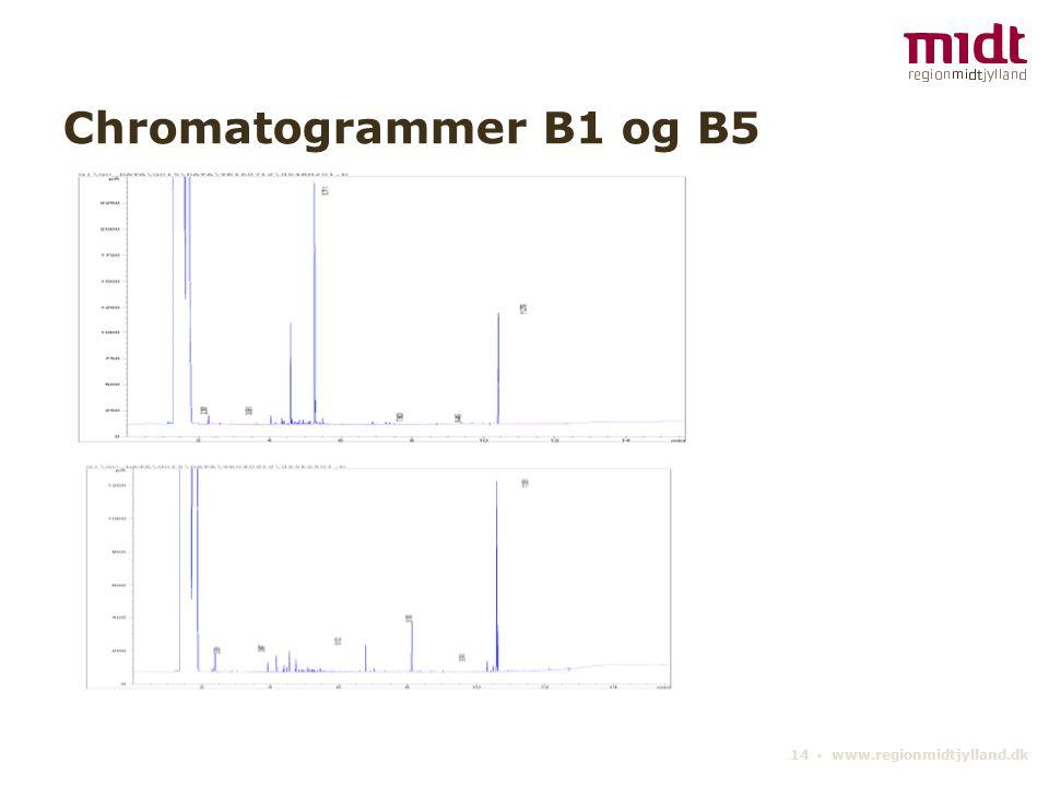 14 ▪ www.regionmidtjylland.dk Chromatogrammer B1 og B5