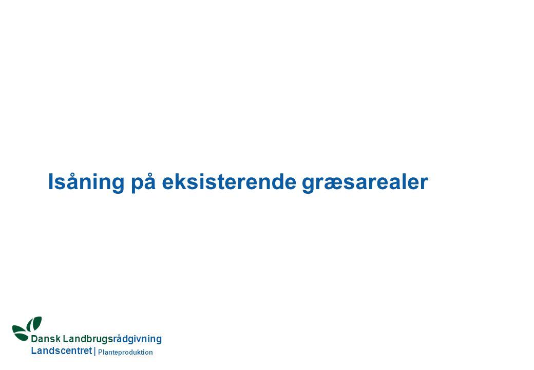Dansk Landbrugsrådgivning Landscentret | Planteproduktion Isåning på eksisterende græsarealer