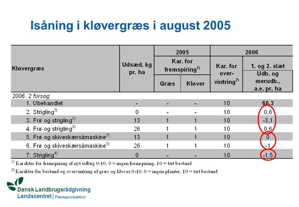 Dansk Landbrugsrådgivning Landscentret | Planteproduktion Isåning i kløvergræs i august 2005