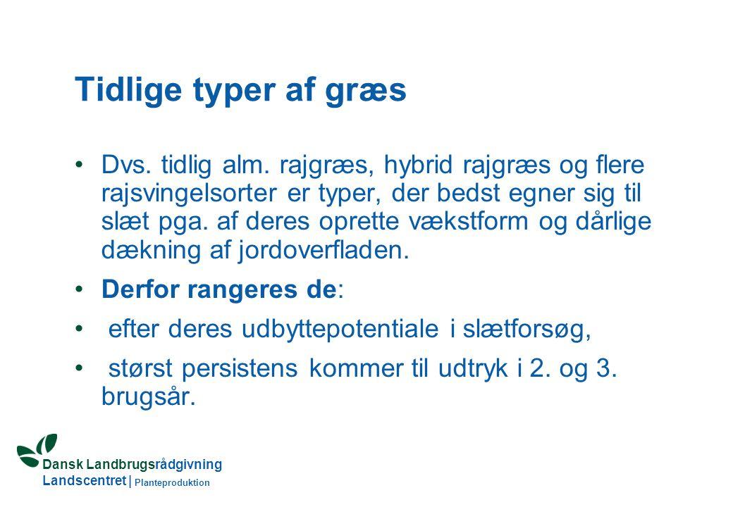 Dansk Landbrugsrådgivning Landscentret | Planteproduktion Tidlige typer af græs Dvs.