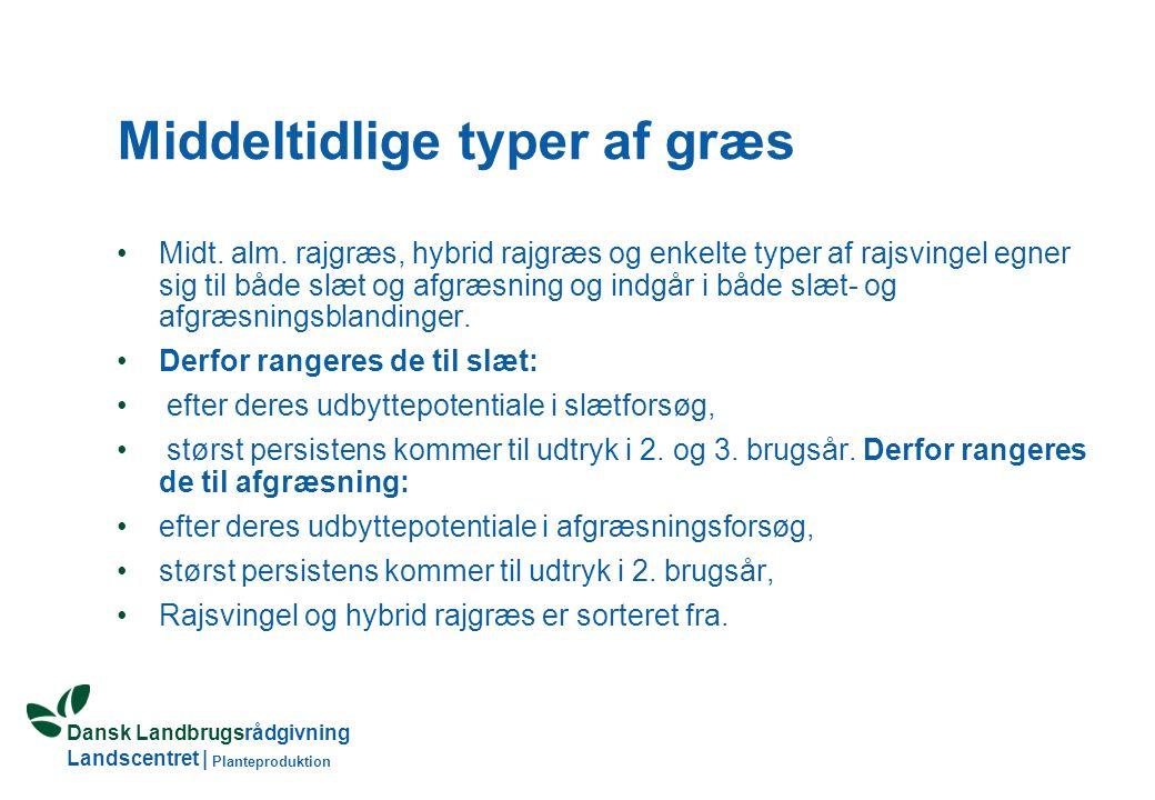 Dansk Landbrugsrådgivning Landscentret | Planteproduktion Middeltidlige typer af græs Midt.