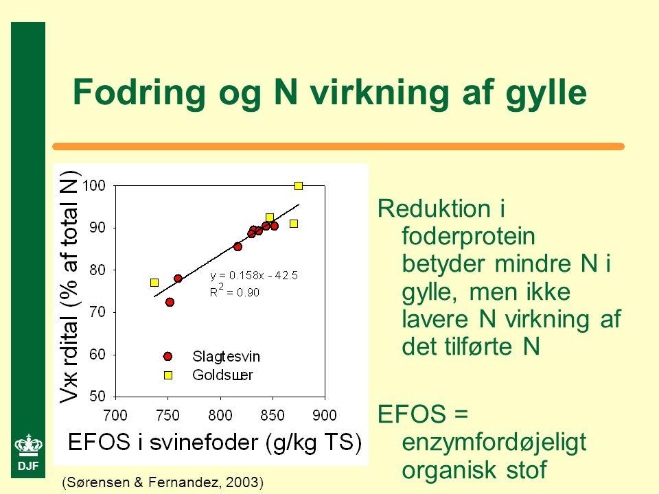 DJF Fodring og N virkning af gylle Reduktion i foderprotein betyder mindre N i gylle, men ikke lavere N virkning af det tilførte N EFOS = enzymfordøjeligt organisk stof (Sørensen & Fernandez, 2003)