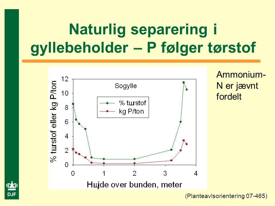 DJF Naturlig separering i gyllebeholder – P følger tørstof (Planteavlsorientering 07-465) Ammonium- N er jævnt fordelt