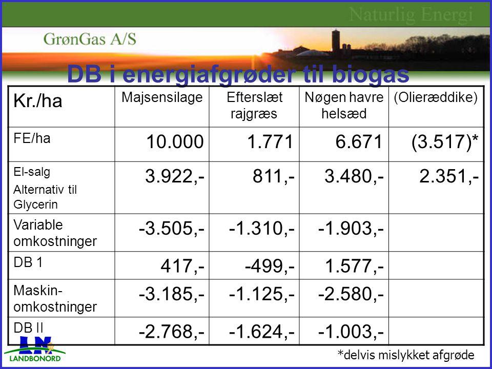DB i energiafgrøder til biogas Kr./ha MajsensilageEfterslæt rajgræs Nøgen havre helsæd (Olieræddike) FE/ha 10.0001.7716.671(3.517)* El-salg Alternativ til Glycerin 3.922,-811,-3.480,-2.351,- Variable omkostninger -3.505,--1.310,--1.903,- DB 1 417,--499,-1.577,- Maskin- omkostninger -3.185,--1.125,--2.580,- DB II -2.768,--1.624,--1.003,- *delvis mislykket afgrøde
