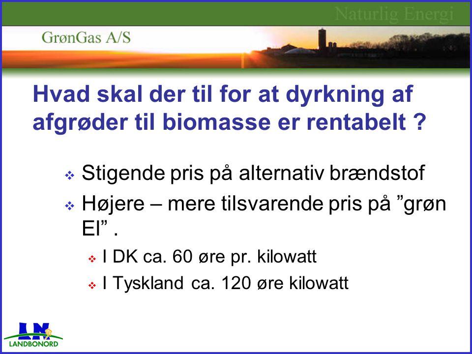 Hvad skal der til for at dyrkning af afgrøder til biomasse er rentabelt .