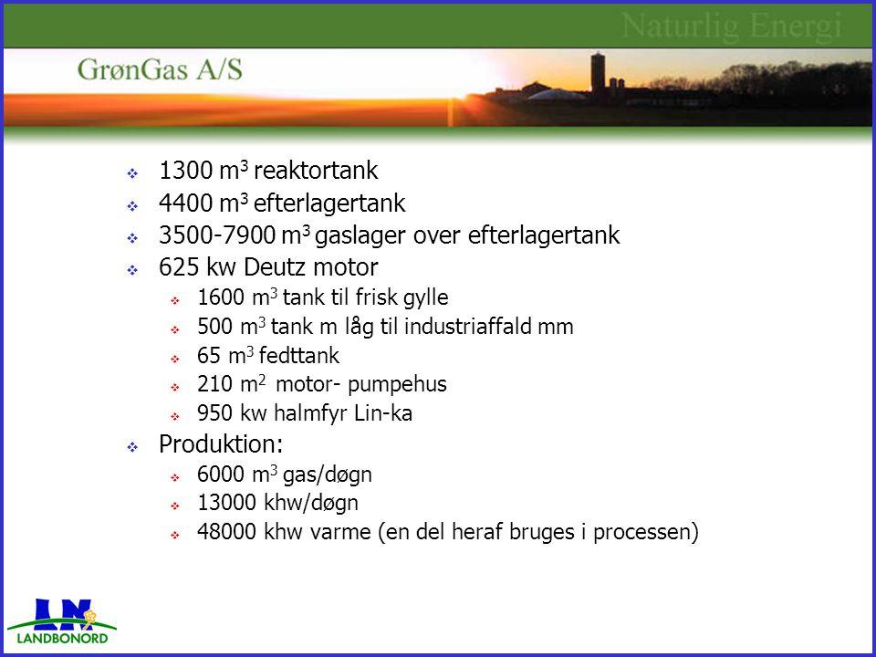  1300 m 3 reaktortank  4400 m 3 efterlagertank  3500-7900 m 3 gaslager over efterlagertank  625 kw Deutz motor  1600 m 3 tank til frisk gylle  500 m 3 tank m låg til industriaffald mm  65 m 3 fedttank  210 m 2 motor- pumpehus  950 kw halmfyr Lin-ka  Produktion:  6000 m 3 gas/døgn  13000 khw/døgn  48000 khw varme (en del heraf bruges i processen)