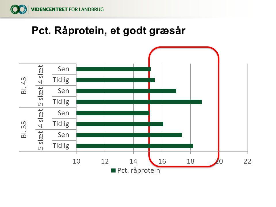 Pct. Råprotein, et godt græsår