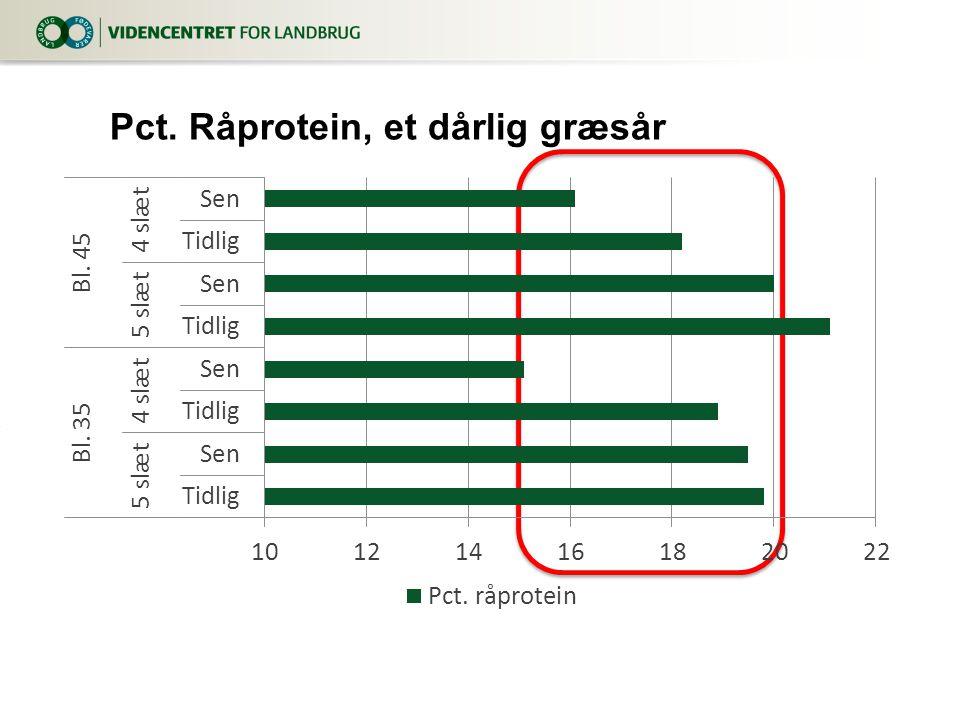 Pct. Råprotein, et dårlig græsår
