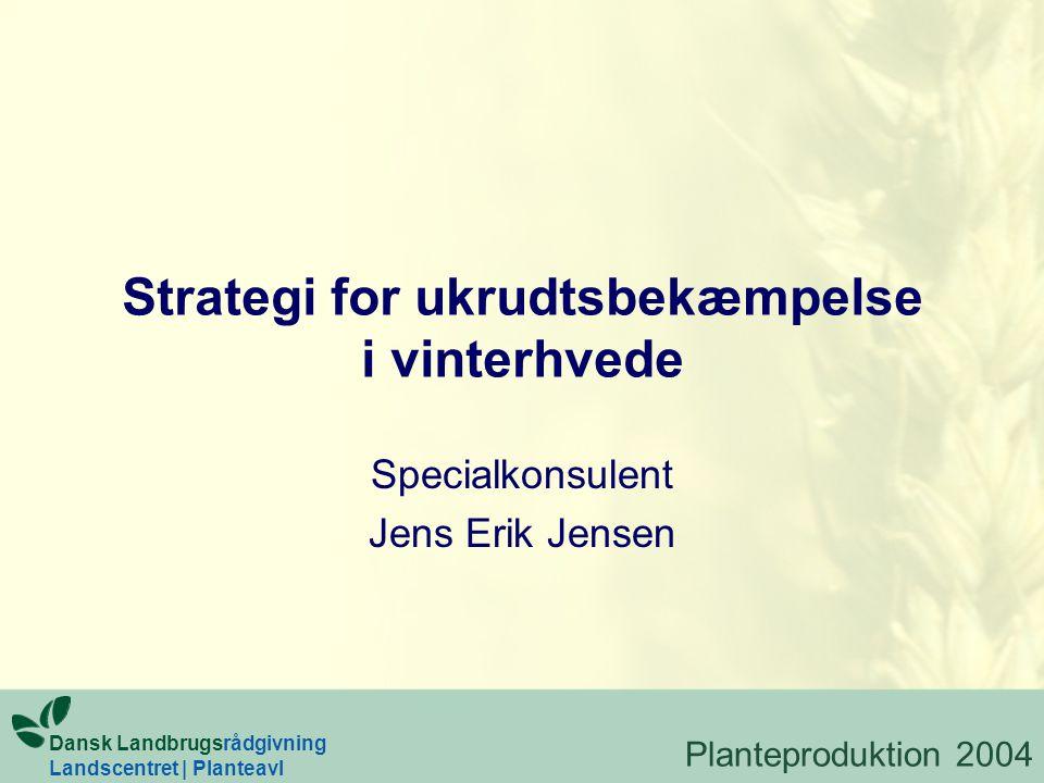Strategi for ukrudtsbekæmpelse i vinterhvede Specialkonsulent Jens Erik Jensen Dansk Landbrugsrådgivning Landscentret | Planteavl Planteproduktion 2004