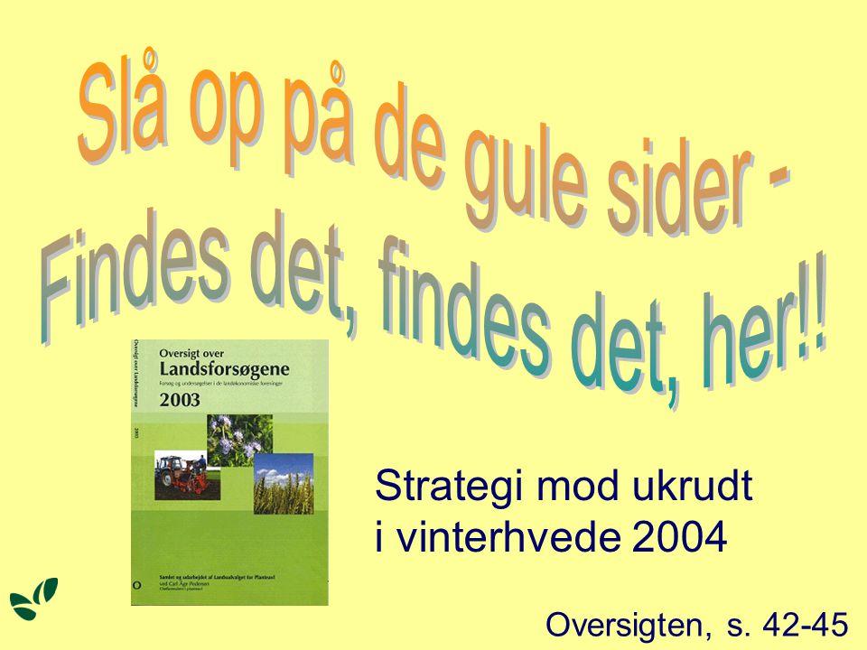 Oversigten, s. 42-45 Strategi mod ukrudt i vinterhvede 2004